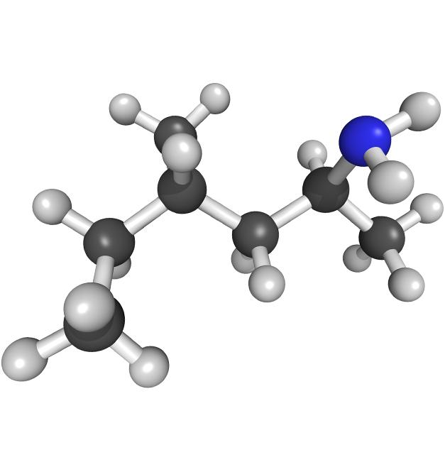 Dimethylamylamine molecular structure