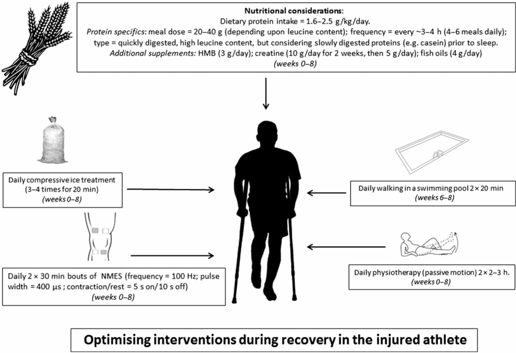 Optimising interventions during recovery in the injured athlete
