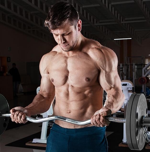 Training - MrSupplement Article
