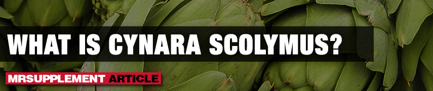 What Is Cynara Scolymus? - MrSupplement Article