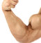 Muscle Gains & Fat Loss Occur Simultaneously?