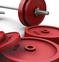 Free Weights vs Machine Weights