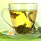 Latest Research - Green Tea Supports Healthy Fat Metabolism