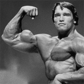 MusclePharm Arnold Series Iron Joint Review