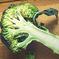 How Do Vegans Gain Weight