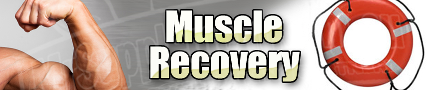 Muscle Recovery for Bodybuilders